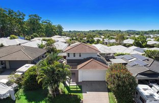 Picture of 31 Kingsmill Cct, Peregian Springs QLD 4573