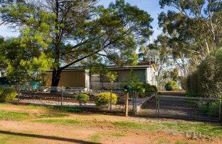 Picture of 32 Wyndham Street, Newstead VIC 3462