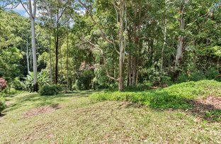 Picture of 4 Gretty Lane, Lower Beechmont QLD 4211