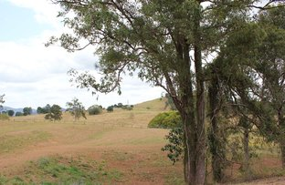 Picture of Lot 3 McIntosh Creek Road, Mcintosh Creek QLD 4570