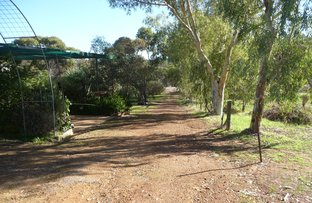 Picture of 4362 Gt Southern Highway, York WA 6302