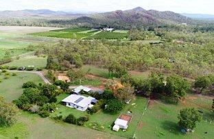 Picture of 708 Bilwon Road, Biboohra QLD 4880