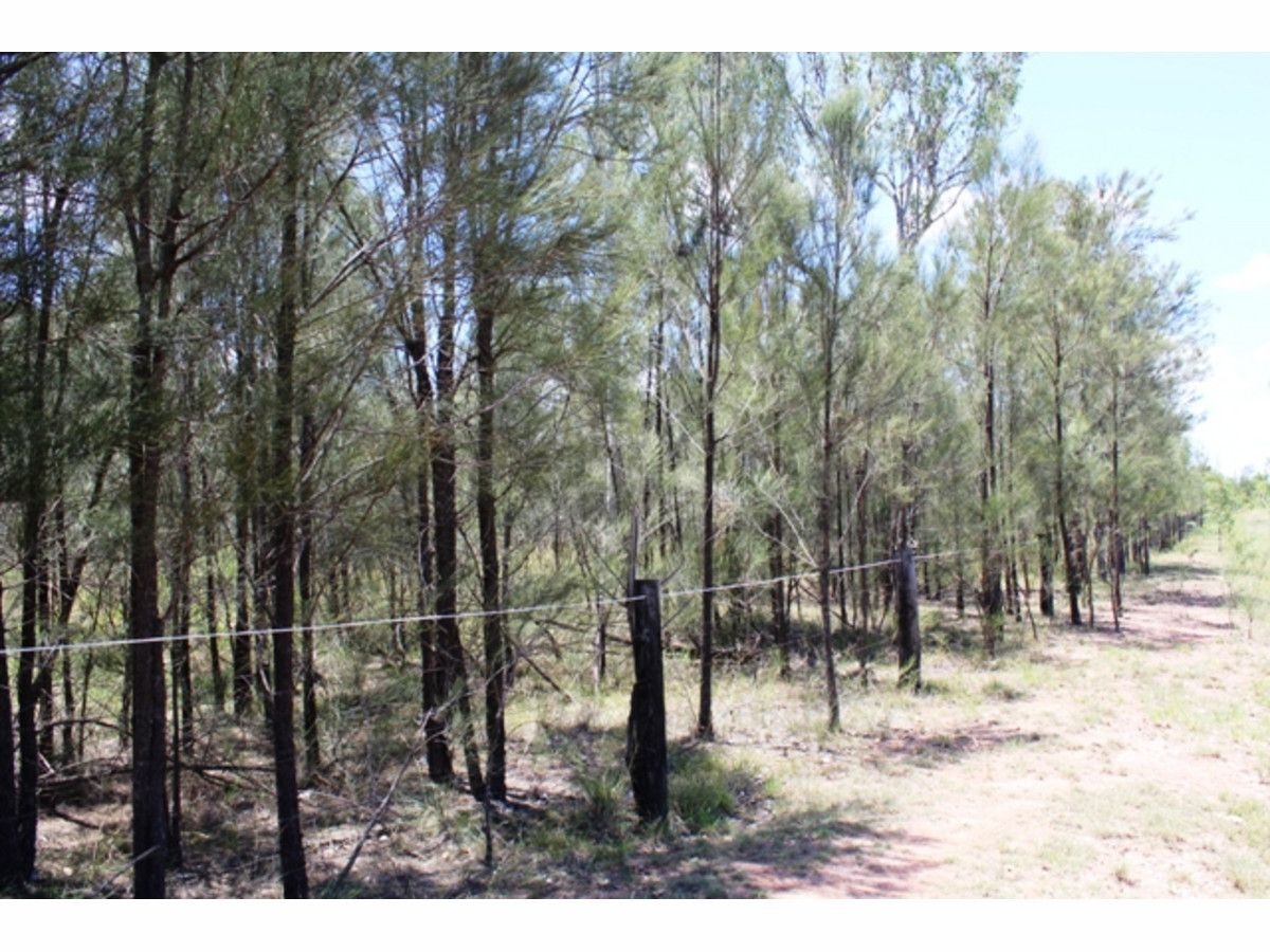 21 Waratah Drive, Morton Vale QLD 4343, Image 0