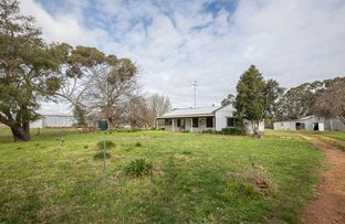 Picture of 1235 Dorodong Rd, Dorodong VIC 3312