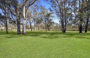 Picture of 384 Cattai Road, Cattai NSW 2756