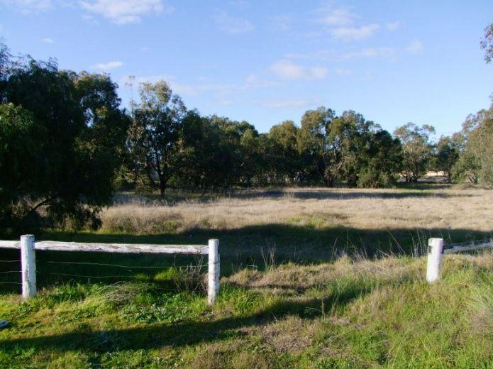 9 Murray River Drive, South Yunderup WA 6208, Image 0