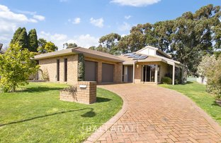 Picture of 40 Fairway Court, Invermay Park VIC 3350