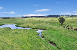 Picture of YONDA 501 Hectares - 1238 Acres 1822 Old Armidale Road, Guyra NSW 2365