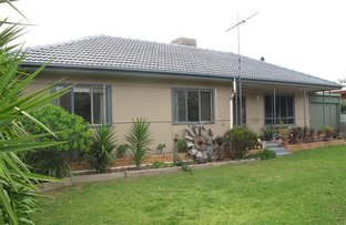Picture of 64 Tiddy Avenue, Maitland SA 5573