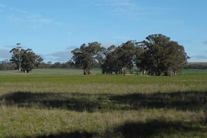 Picture of CA 20C Three Chain Rd, NATTE YALLOCK VIC 3465
