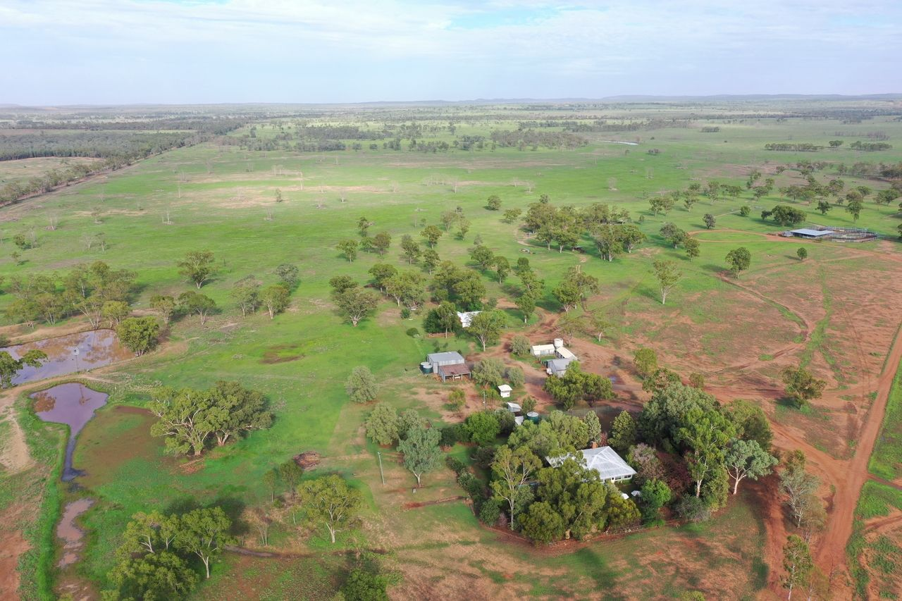 502 Mt Lonsdale Road, Mungallala QLD 4467, Image 2