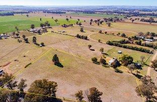 Lots 273 & 274 Noonbinna Road (Noonbinna), Cowra NSW 2794