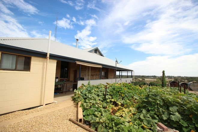 Picture of 497 Mackintosh Road, CADELL SA 5321