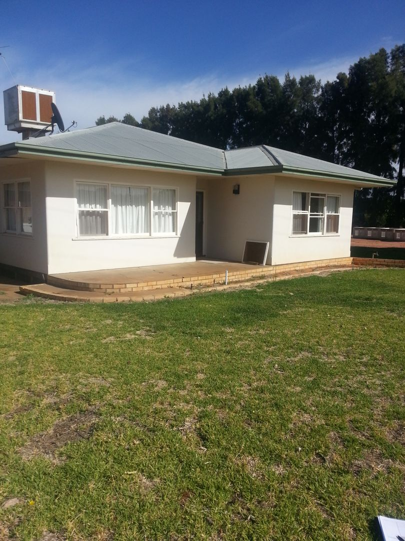 369 Citrus Drive, Dareton NSW 2717, Image 0