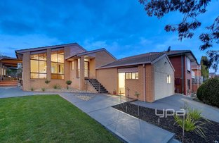 16 Aster Close, Meadow Heights VIC 3048