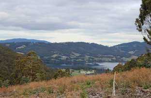 Picture of 60 Acres Harwoods Road, Castle Forbes Bay TAS 7116