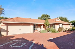 Picture of 4/170 Grand Promenade, Doubleview WA 6018