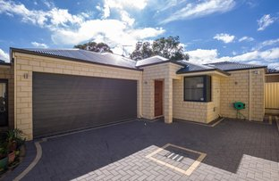 Picture of 46C Tetworth Crescent, Nollamara WA 6061