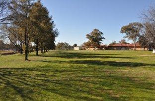 Picture of 29 Scott, Cootamundra NSW 2590