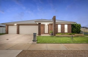 Picture of 6 Visca Court, Echuca VIC 3564