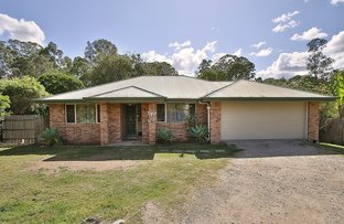 Picture of Cedar Vale QLD 4285