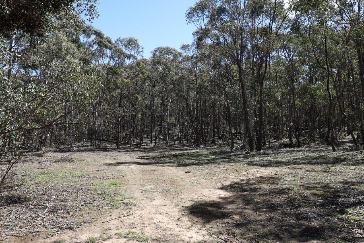 262, 2401 Lumley Rd, Lake Bathurst NSW 2580, Image 2