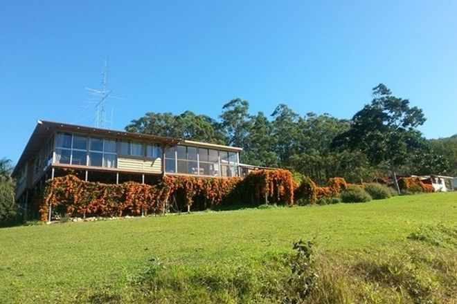 Picture of MOTHAR MOUNTAIN QLD 4570