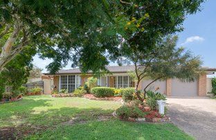 Picture of 3 Shylock Crescent, Sunnybank Hills QLD 4109