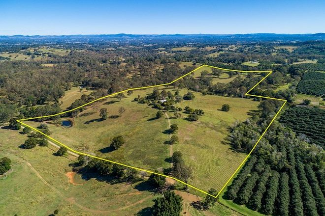 Picture of 181 Hay Road, CANINA QLD 4570