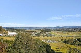 Picture of 179 Farmborough Road, Farmborough Heights NSW 2526