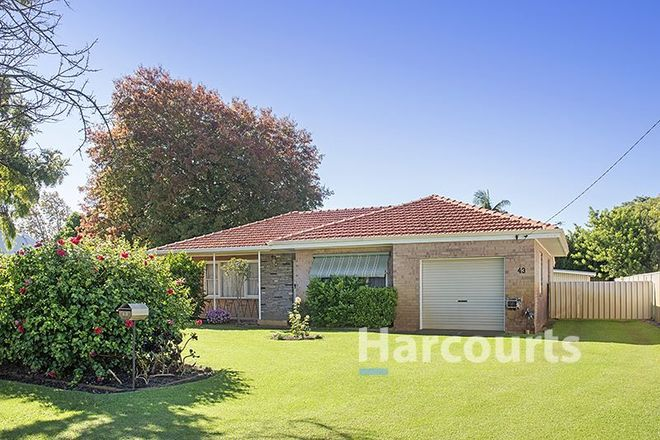Picture of 43 Strelly Street, BUSSELTON WA 6280