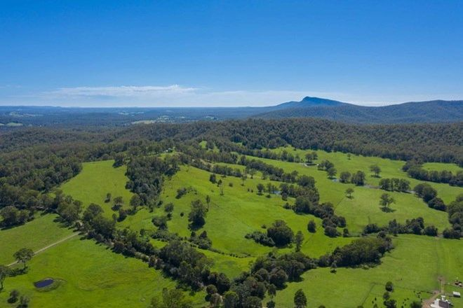 Picture of 25 JONES ROAD, BYABARRA NSW 2446