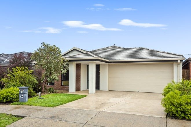 Picture of 20 Eden Terrace, CURLEWIS VIC 3222