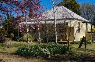 25 Dumaresq Road, Armidale NSW 2350