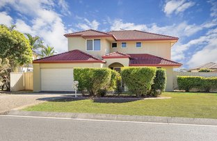 Picture of 17 Anna Drive, Raceview QLD 4305