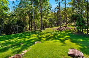 Picture of 14 Clare Ct, Tallebudgera Valley QLD 4228