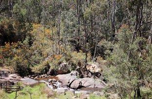 47 Fox Lane, Tumbarumba NSW 2653