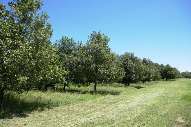 Picture of Lot 6 Cook Road, GLASS HOUSE MOUNTAINS QLD 4518