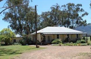 2409 Kelvin Road, Kelvin NSW 2380