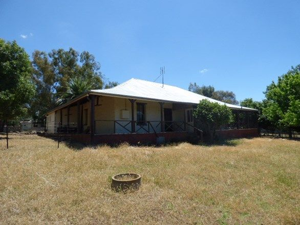 """Rosedawn""/14  Noongal Road, Harden NSW 2587, Image 0"