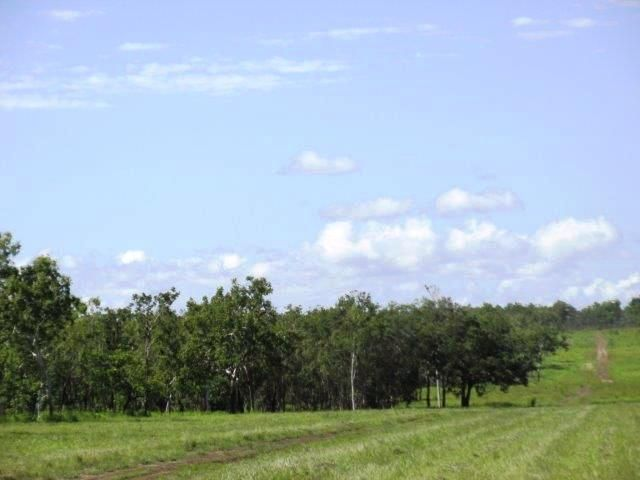 Lot 1268 Coach Road, Batchelor NT 0845, Image 2
