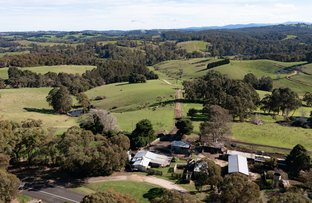 Picture of Shady Creek VIC 3821