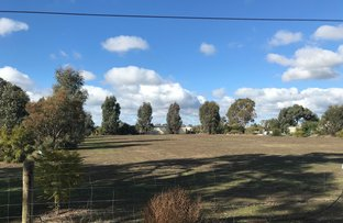 Picture of Lot 17 Vinecombe Lane, Barham NSW 2732