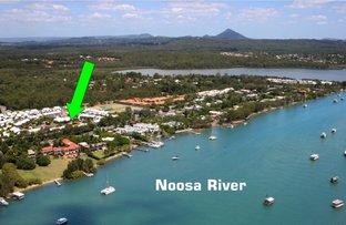 Picture of Unit 15/73 Hilton Terrace, Noosaville QLD 4566