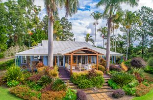 Picture of 16 Palm Grove Road, Cooroy QLD 4563