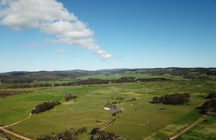 Picture of Lot 11 Freebrough Road, Youngs Siding WA 6330