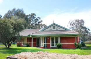 Picture of 536 Kellys Lane, Violet Town VIC 3669