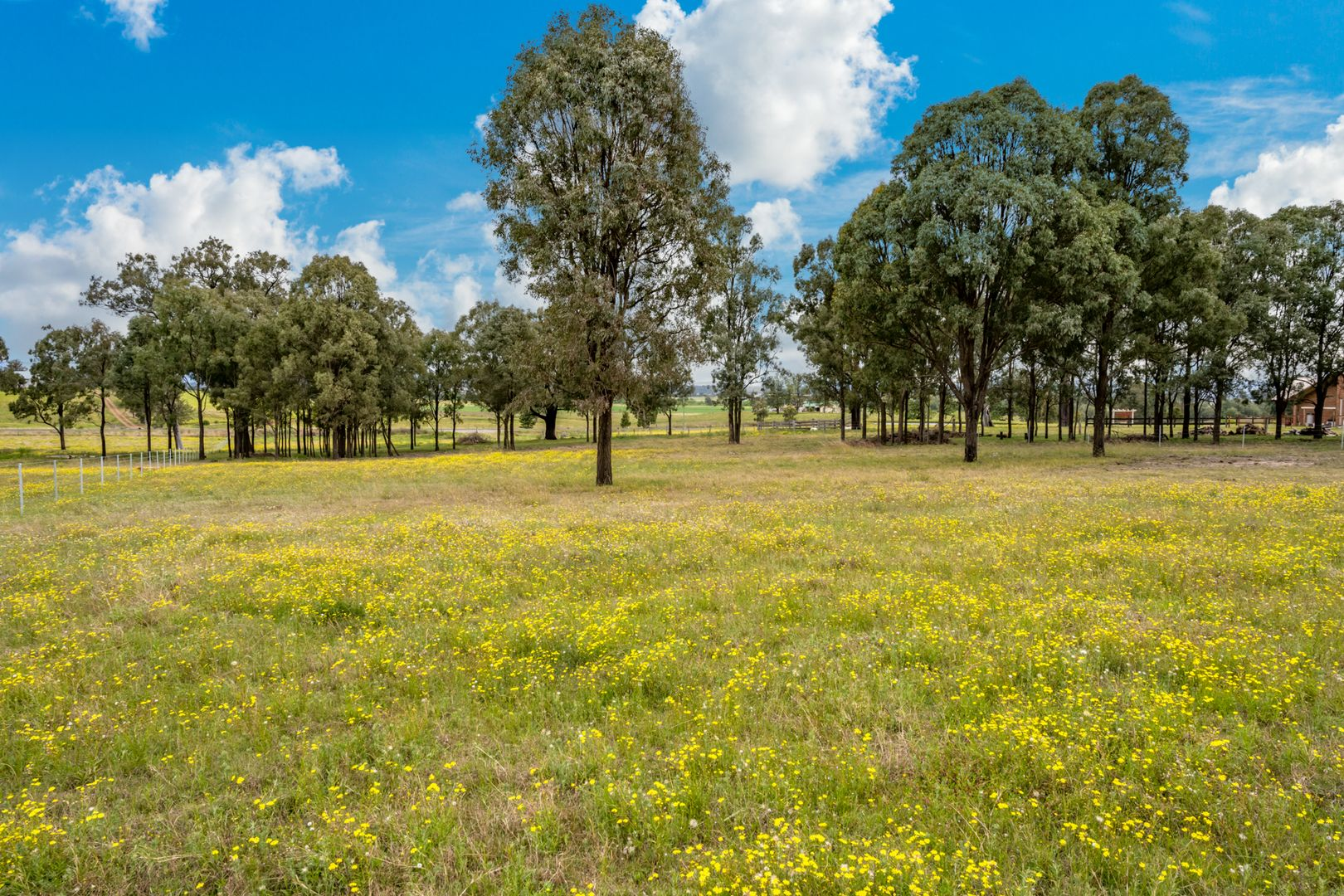 Lot 12 Glendon Road, Singleton NSW 2330, Image 0