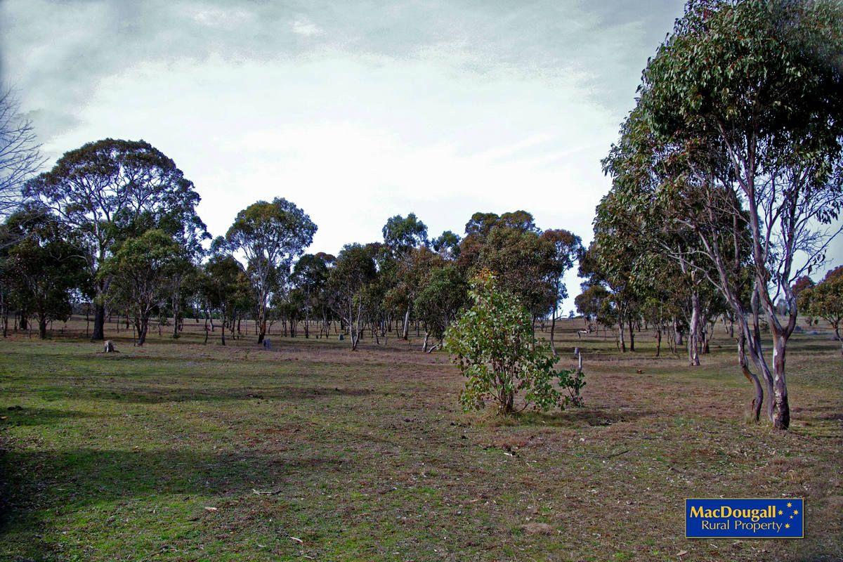 Kellys Plains Road, Armidale NSW 2350, Image 2