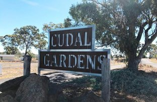 Picture of 9,10,13 & 14 Rodda Drive, Cudal NSW 2864